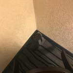 Baymont Inn & Suites Nashville/Brentwood Photo