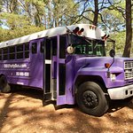 OBX Party Bus - you drink, you party, we drive!