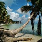 Crawl Cay