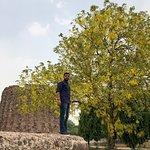 Foto van Alai Minar