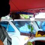 Наглая обезьянка запрыгнула к нам на катер.