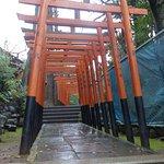 ภาพถ่ายของ สวนอุเอโนะ