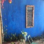 El Jardin de Frida Picture