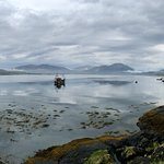 Bilde fra The Scottish SEA LIFE Sanctuary