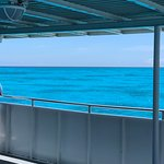 Looking out over Molasses Reef