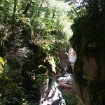 صورة فوتوغرافية لـ Gorges du Fier