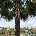 Balboa Bay Resort Φωτογραφία