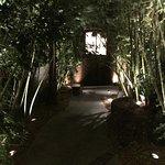 entry through Bamboo
