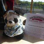 High Tea for panda