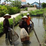 Photo of Hoi An Impressive Farm