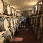 Inside the beautiful wine cellar
