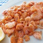 Mini shrimps
