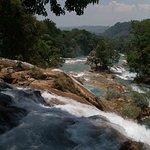 Cascadas de Agua Azul Foto