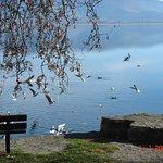 Φωτογραφία: Kastoria Lake