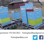 Schedule your Apiary (Bee Yard) Tour Today!
