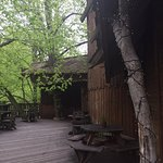 The Treehouse Restaurant at the Alnwick Garden