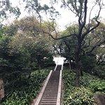 ภาพถ่ายของ Yuexiu Park