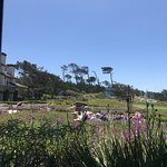 Foto de Roy's at Pebble Beach