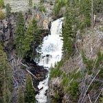 Foto de Lower Yellowstone River Falls