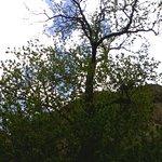 Parco Avventura La Turna Foto