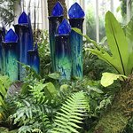 ANOTHER MASTERFUL CHIHULY