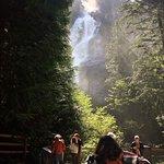 Shannon Falls Provincial Park ภาพถ่าย