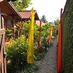 Aratinga Inn Picture