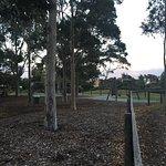 Royal Avenue Park Playground