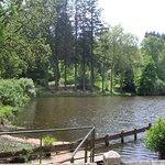 Arboretum de Pezanin