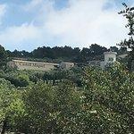 Bild från Bodega Castell Miquel