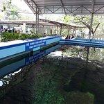Foto National Oceanographic Museum of Vietnam