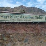 Bilde fra Nishat Garden
