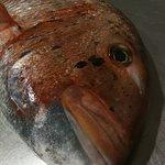 En Pic-Nic no ahí pescado congelado
