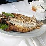 Photo of Ellinikon Fish Tavern