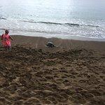 Kahana Beach Resort Photo