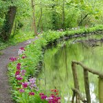 Photo de Fairhaven Woodland and Water Garden