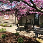 Spring at Rebecca's Bistro!