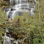 Toms Spring Falls