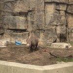 Fantastic day at the zoo