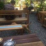 Photo of Phong Nha Coffee Station