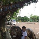 六福村主題遊樂園照片