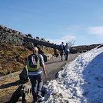 Foto de Vidden Trail between Mt. Fløyen and Mt. Ulriken