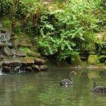 Фотография Vale dos Lagos at Parque de Pena