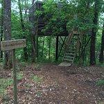 Foto de Cabañitas del Bosque