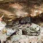 Surprise cave.