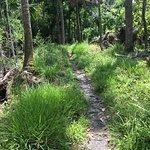 Bulow Creek State Park resmi