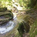 Stream's Carved path through the rocks