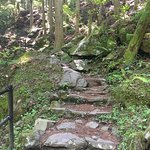 Typical steps through much of the trail