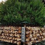 龜戶天神社照片