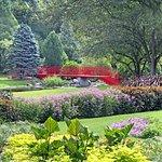 Dow Gardens
